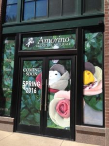 Amorino Coming Spring 2016!