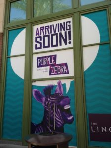 Purple Zebra - Arriving Soon!